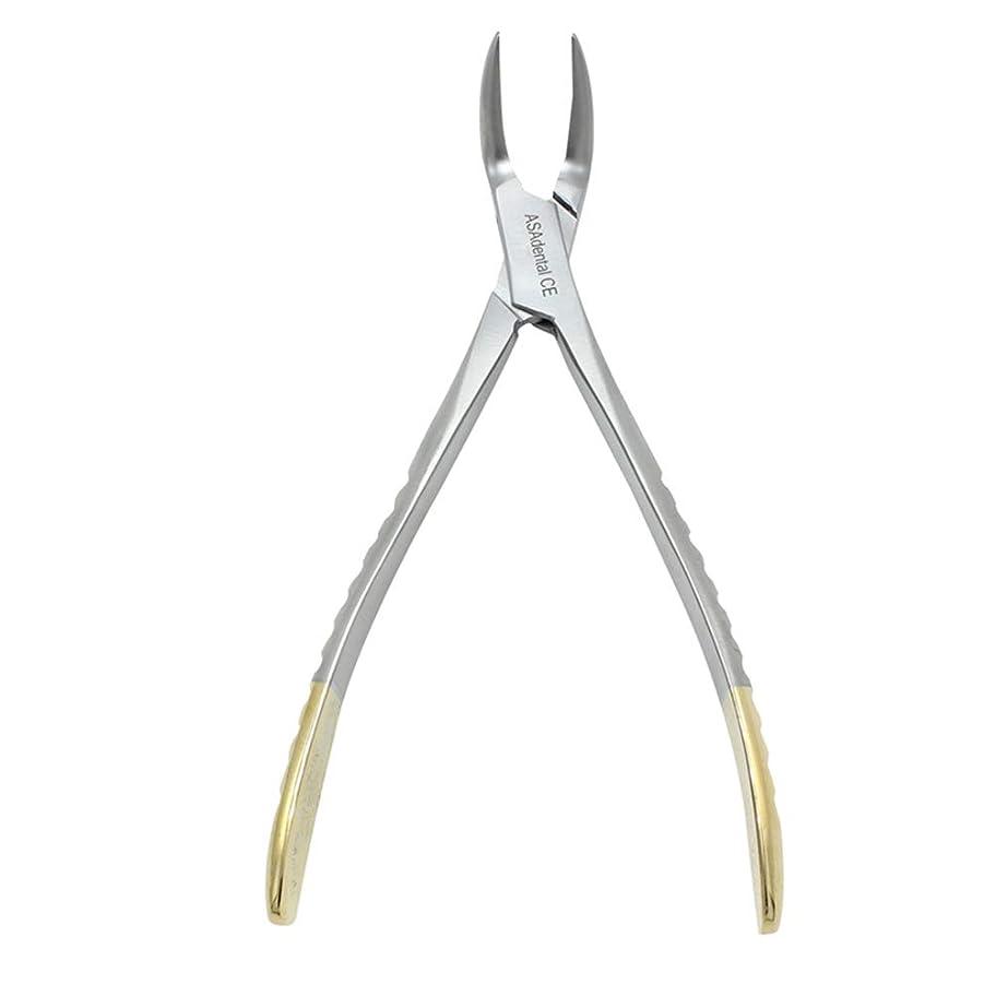 癌戸棚控えるHealifty 歯科ピック1ピース歯科ペンチステンレス鋼残留ルート鉗子湾曲ピンセット歯科ラボ用品