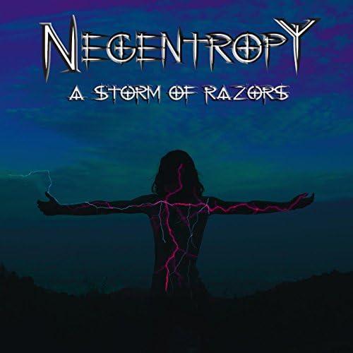 The Negentropy
