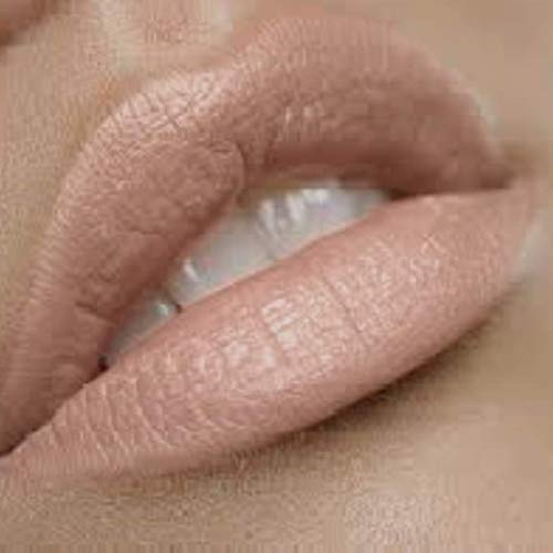 """Blushing Bride"" Premium Nude Lipstick   Satin Finish   By the Clique"