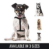 BELISY Hundegeschirr reflektierend aus Nylon - Schwarz - S (Hals 17-25cm / Brust 45-64cm)