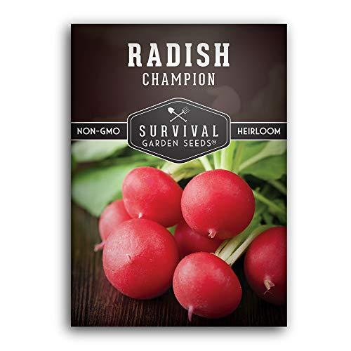 Survival Garden Seeds – Champion Radish Seed for Planting