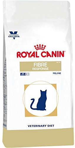 ROYAL CANIN Cat Fibre Response, 1er Pack (1 x 4 kg)