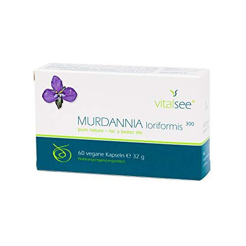 MURDANNIA loriformis 300 Extrakt, 60 vegane Kapseln mit hochdosiertem Murdannia loriformis Extrakt Pulver