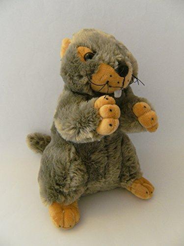 Unbekannt Stofftier Murmeltier, 24 cm, Kuscheltier Plüschtier, Murmeltiere
