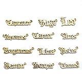 12 colgantes de constelación con signo del zodiaco y 12 colgantes de la suerte, redondos, para pulseras de bricolaje, collares, pendientes, fabricación de joyas