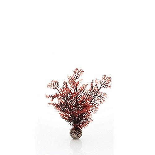 biOrb Éventail de Mer Petit pour Aquarium Rouge