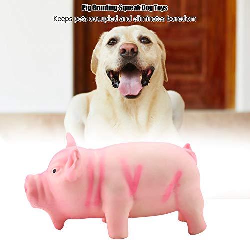Pangding Giocattolo per Animali Domestici, Maiale Carino Grunting Squeak Latex Pet Masticare Denti Denti digrignare Macinare Gioco molare Giocare a Giocattoli per Cane Cucciolo Gatto(Rosa)