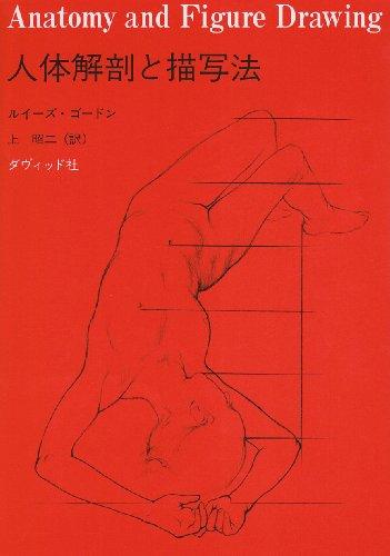 人体解剖と描写法