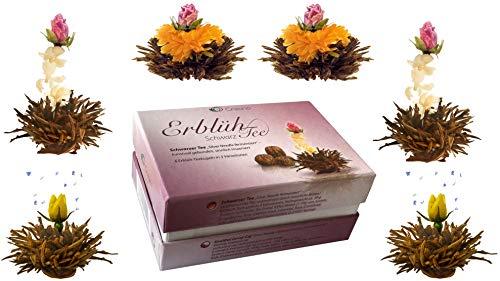 Creano 6 Teeblumen Erblühtee in edler Geschenkbox zum Probieren - Schwarztee (3 verschiedene Sorten Teerosen)