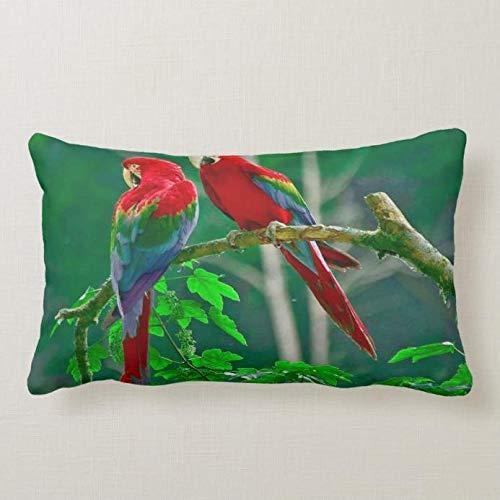 perfecone Home Improvement - Funda de almohada para sofá y coche (50 x 75 cm), diseño de dos loros rojos, color rojo