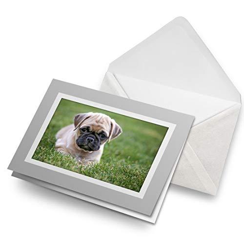 Impresionante tarjetas de felicitación gris (inserto) – adorable cachorro perro carlino en blanco tarjeta de felicitación de cumpleaños para niños y niñas #16768