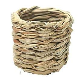 B Blesiya Natural Straw Birds Nest, Great for Wedding Favors, Party Favors, Florals or Baby Showers
