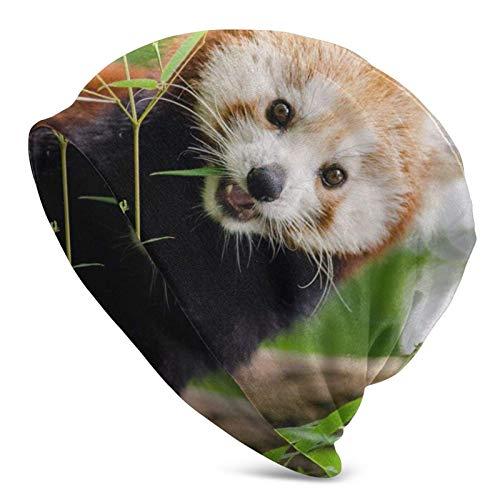 BGDFN Lindo Panda Rojo (2) Gorro de Punto Gorro cálido Gorros elásticos con puños Suaves Gorro Diario para Unisex