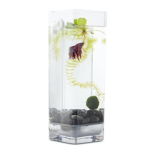 NoClean Aquariums - Self Cleaning Betta Fish Tank!