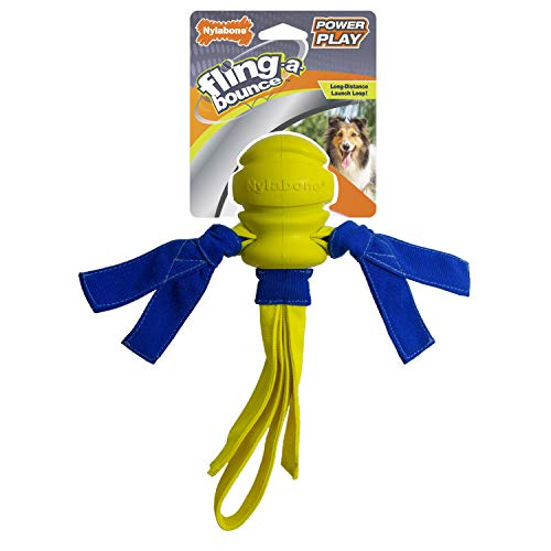 Nylabone Power Play Fling-A-Bounce Dog Toy