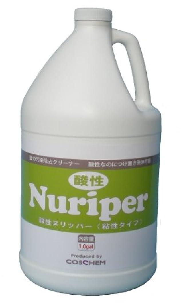 境界大陸学部長TOSHO(コスケム) 酸性ヌリッパー 3.78L co-0013 4本セット