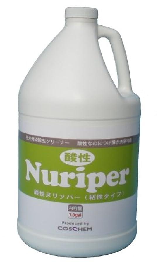 苦しむ州消費TOSHO(コスケム) 酸性ヌリッパー 3.78L co-0013 4本セット