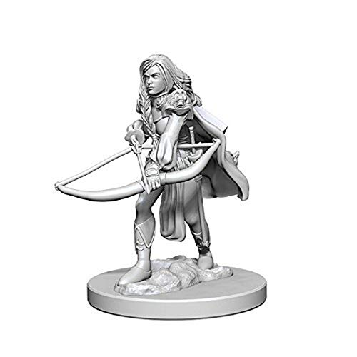 Pathfinder Deep Cuts Unpainted Minis:human Female Fighter