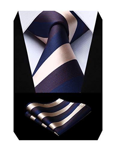ビジネス ネクタイ チーフ セット メンズ おしゃれ ネクタイ セット ブランド ストライプ 結婚式 就活 営業 入学式 卒業式 プレゼント 父の日 TS909B8S by HISDERN(ヒスデン)