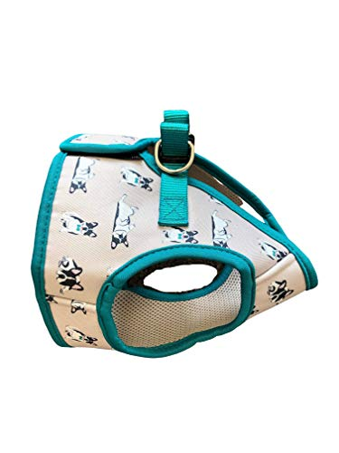 QTpawz French Bull Dog Puppy Step in Harness - Easy On Design with Velcro - Perfect for Frenchie Puppies and Smaller French Bull Dogs (Large)