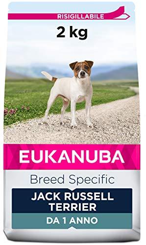 Eukanuba, Razza Speciale, Cibo Secco per Jack Russel,Crocchette con Pollo, da 1 Anno, 2 Kg