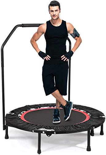 ANCHEER Fitness Trampolin, Fitness Trampolin Klappbar, Höhenverstellbarer Griff, für Erwachsene und Kinder, für Indoor und Outdoor, Maximale Tragfähigkeit 135 kg.