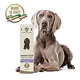Lavaggio a Secco Naturale per Cani - Senza Bisogno di Acqua o Risciacquo - con Ingredienti di Origine Vegetale - Adatto per Tutti i Tipi di Pelo, Linea 101, 250 Ml