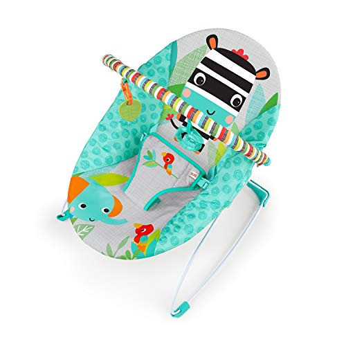 Bright Starts Zig Zag Zebra Vibrating Bouncer