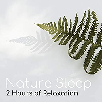 Nature Sleep - 2 Hours of Relaxation