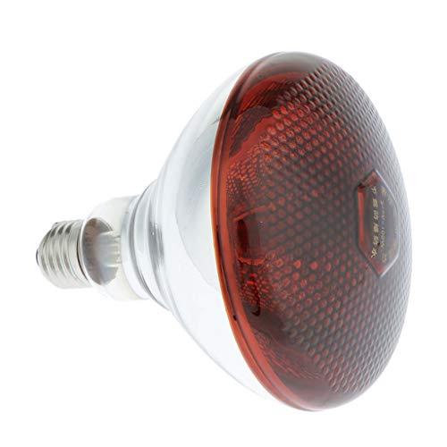 FLAMEER E27 Infrarot Wärmelampe Spotlampe Infrarotlampe Heizstrahler Terrarium Heizlampe für Reptilien - 100W