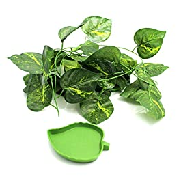 GenRev 7.5ft (2.3m) Reptile Plant Vines Terrarium Habitat Décor Set with Suction Cups for Bearded Dragon, Anole, Gecko, Lizard, or Snake Cages – Includes Food Water Dish
