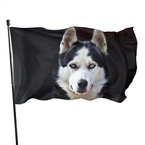 LZHANDA Garten Flaggen Flagge Fahne, Garden Flag Husky Outdoor Yard Flag Wall Lawn Banner Home Flag Decoration 3' X 5'