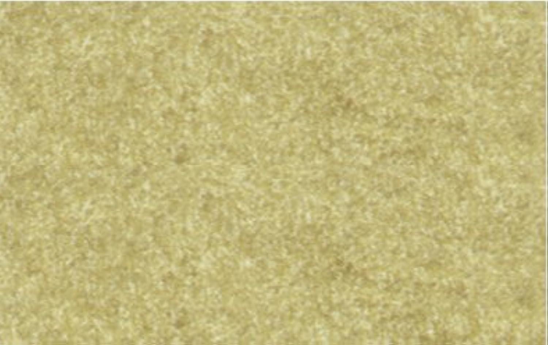 Elefantenhaut in dem Format 50 x x x 70 cm, Papierstärke 190 g qm, 10 Blatt - chamois B00VI7BPDA | Feinbearbeitung  177e1a
