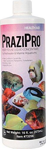 Hikari Usa AHK73256 Prazipro for Aquarium, 16-Ounce