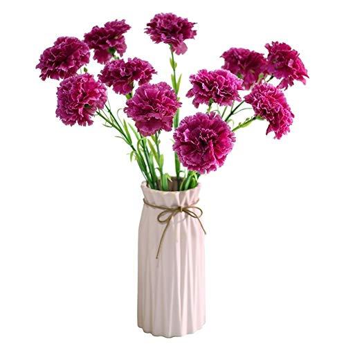 W-L Flores Artificiales Decoraci 10 Piezas Falso Clavel Rosa de Clavo Flores Artificiales for el Día de la Madre del hogar del Regalo (Color : 06)