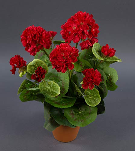 Seidenblumen Roß Geranie 36cm rot -ohne Topf- LM Kunstpflanzen Kunstblumen künstliche Blumen Pflanzen Pelargonium