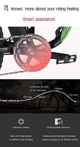 E-Bike Mountainbike 1000W Extrbici XF800 Fatbike Bild 6*