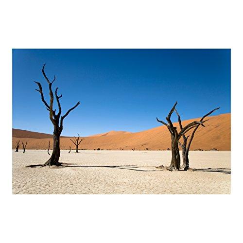 Vliestapete Das Sossusvlei in Namibia, Größe: 225cm x 336cm