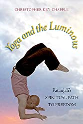 yoga and the lumimous one of the best yoga books about patanjali's sutras