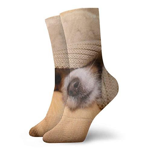 H&esocken, Jack Russel Terrier, Nova, Tiermode, lange Socken, weich, wärmende Strümpfe, 1 Paar für Damen & Herren, Sportsocken, 30 cm