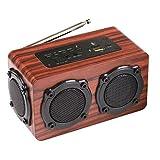 LG&S Altavoz Bluetooth Inalámbrico De Madera con Radio FM Karaoke, Entrada De...