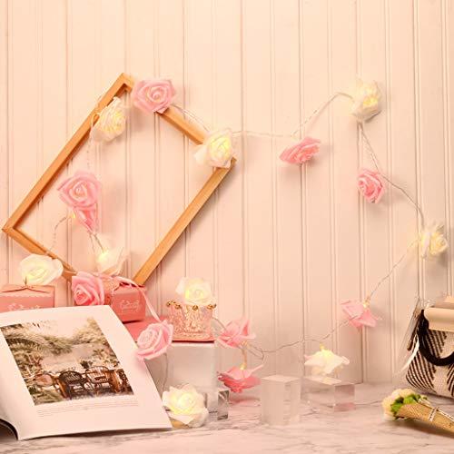 Dapei LED Rose Lichterketten für Innenräume - 3M 20LED Kupferdraht Blume Lichterketten USB Rosa Beleuchtung Zimmer Romantisch Deko für Heiratsantrag Erntedankfest Weihnachten Valentinstag