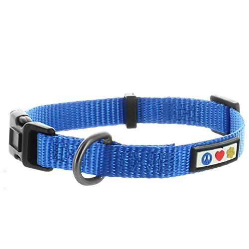 Pawtitas Collar para Perros Ideal para el adiestramiento de tu Mascota, Collar de Perro cómodo y Duradero con Anillo de Metal para Etiqueta de Nombre - Collar Color Azul XS