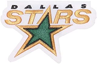 Dallas Stars Primary Team Logo Patch (1993-2013)