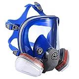 ENJOHOS Masque de Protection Complet avec filtres P-A-1 en Silicone pour Travail dans la Pulvérisation Peinture Antipoussière des travaux industriels, d'Agriculture et de Bricolage