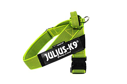 Julius-K9 IDC Color & Gray Belt Harness for Dogs, Size 2, Neon-Gray