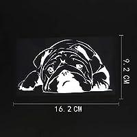 車のステッカーの装飾 16.2CMX9.2CMかわいい英語ブルドッグペット犬ビニール車ステッカーブラック/シルバー (Color Name : Silver)