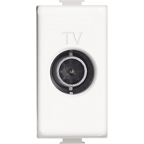 BTicino AM5202P14 Matix Presa TV Passante, 14 Db, Bianco, 1 m