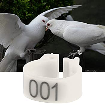 Sheens Bague pour Poule, 100pcs / bagues Oiseau bagues Bague pour Pigeon volaille en Plastique Anneau à Pince Durable pour Poussins d'oiseaux Canards Poulet(Blanc)