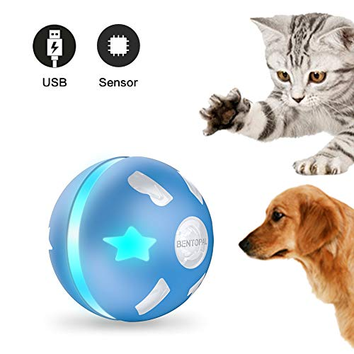 PetDroid Interactive Cat/Dog Toys Ball,Motion Activated Automatic Rolling Ball Toys for Cats/Kitten,USB Rechargeable (Blue) (Blue)